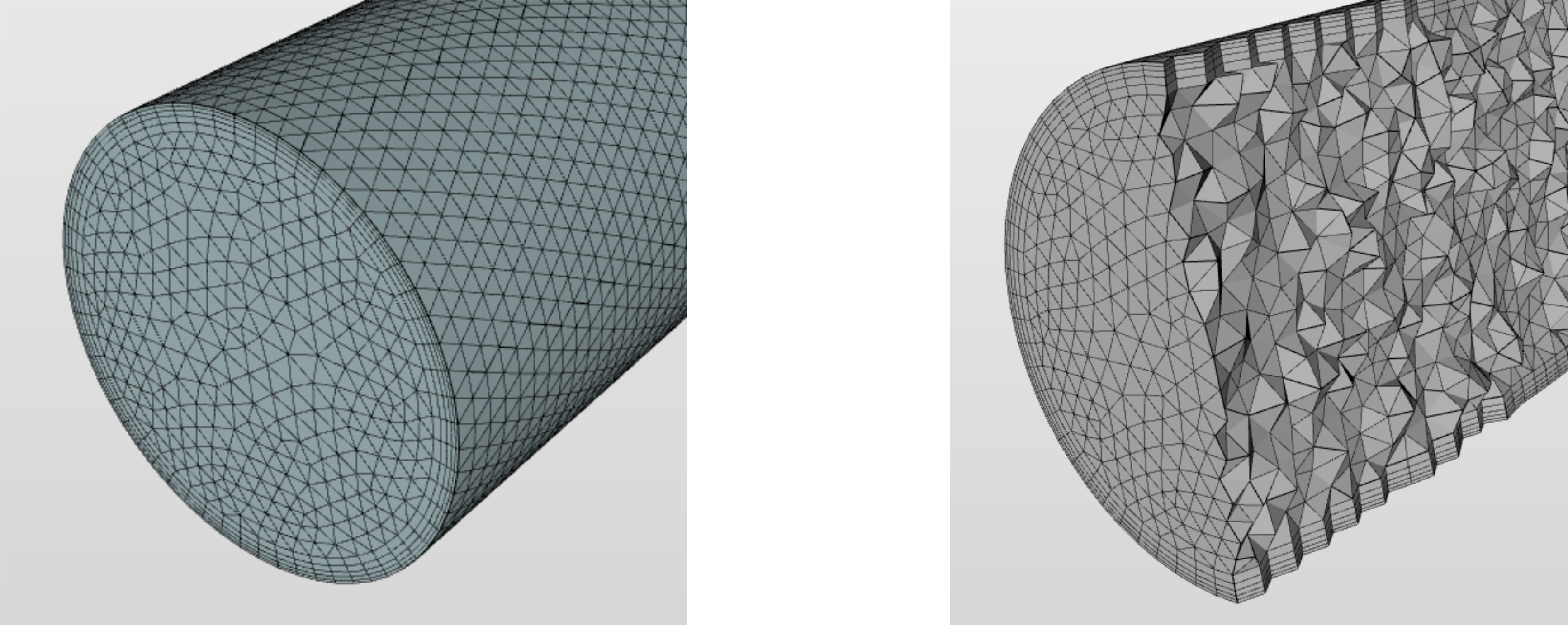 mesh and internal cells
