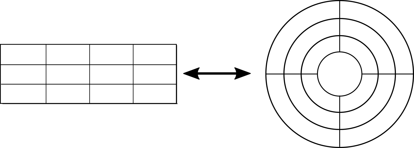 rectangular and curvilinear grid